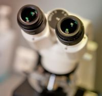 z1_mikroskop